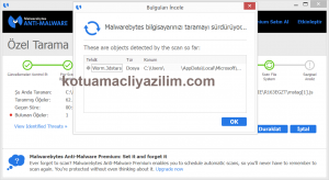 Malwarebytes-Anti-Malware-bulgular